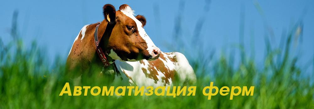 Системы управления стадом, передвижение животных, электронная бирка, выявление половой охоты,